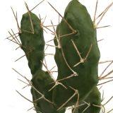 Kunstig kaktus fiken H43cm m/plastpotte