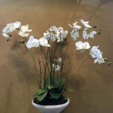 Kunstig orchide phalaenopsis plante hvit m/grener i fat