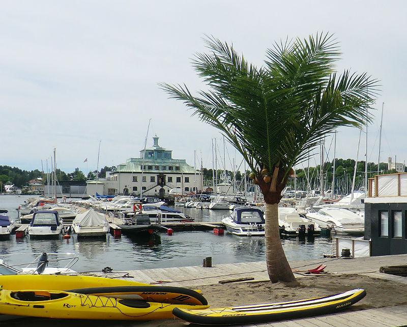 Oppsetting av fem meter høye palmer for Kongen Marina, Philipstad og ved Pushwagnerskuret, Tjuvholmen.