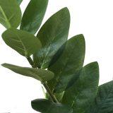 Kunstig zamioculcas plante H110cm