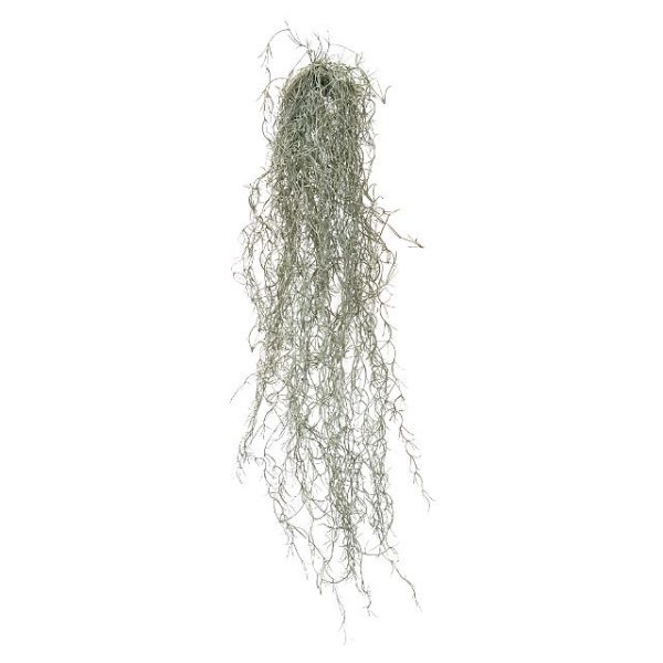 Kunstig tillandsia hengeplante L81cm u/potte