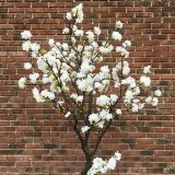 Kunstig kirsebærtre hvit H210cm