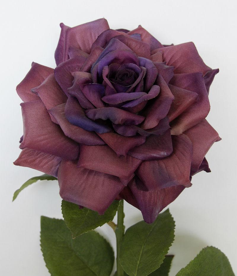 15328_rose_fridalilla45cm2