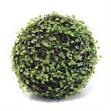 Mohlenbechia ball Ø23cm *SALG