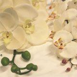 Kunstig orchide phalaenopsis gigant creme 125cm *SALG