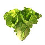 Kunstig salat grønn 17cm *SALG