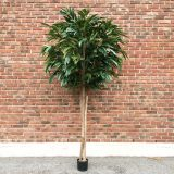 Kunstig bambusfikus UV H270cm