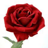 Kunstig rose Selma rød 65cm *SALG