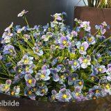 Kunstig stemor plante blå H32cm u/potte *SALG