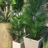 Kunstig palme robellini UV H180cm