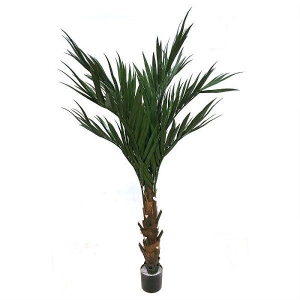 Kunstig palme kentia sunny UV H180cm