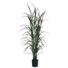 Kunstig gress plante red tail UV H120cm