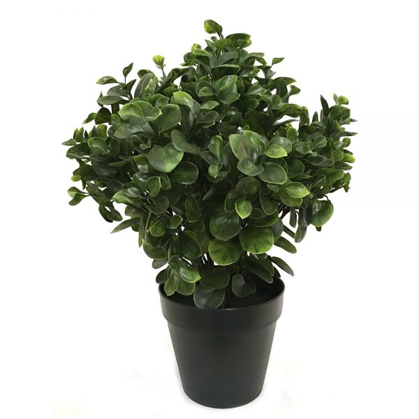 Kunstig peperomia busk H60cm