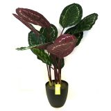 Kunstig calathea plante rainbow UV H100cm