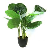 Kunstig calathea plante pearl UV H90cm