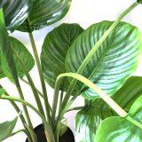 Kunstig calathea plante pearl UTE H90cm