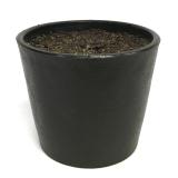 Potte m/innmat og jord plast sort Ø8,7xH7,4cm