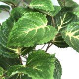 Kunstig begonia plante grønn H30cm u/potte *SALG