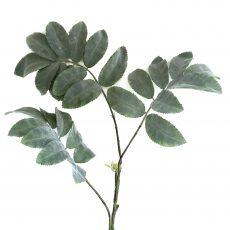 Kunstig ask gren m/store støvgrønne blader 120cm