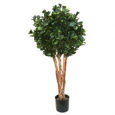 Kunstig pengefikus plante på stamme UV H120cm