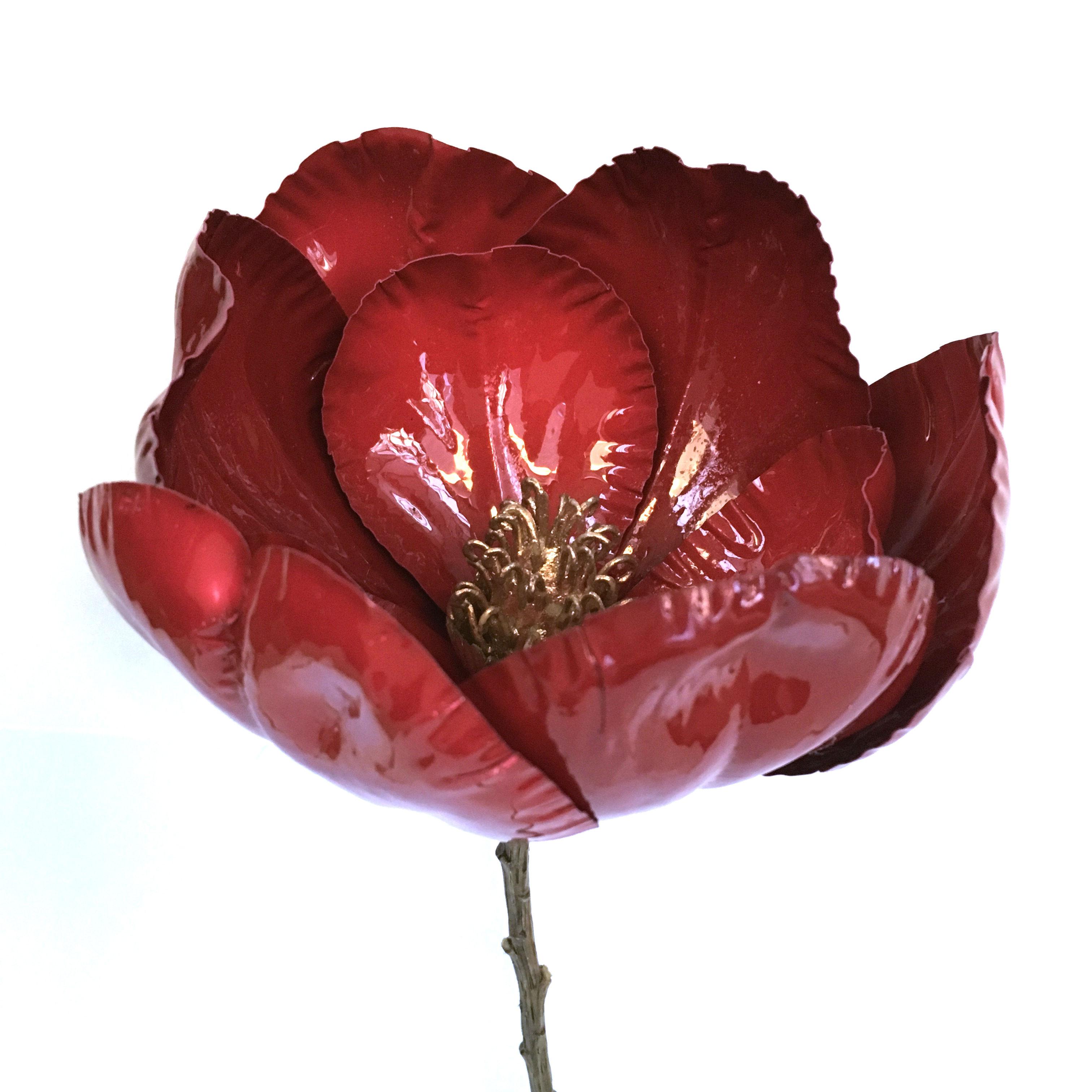 16857_magnolia_porselen_roed1