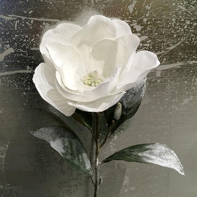 16858_magnolia_sne_hvit1