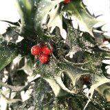 Kunstig kristorn hengeplante frost/grønn L78cm u/potte *SALG