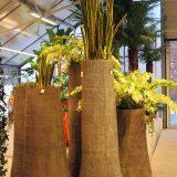 Potte palm truck natur Ø65xH150cm *SALG