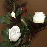 Kunstig magnoliatre Sunniva hvit H120cm