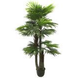 Kunstig palme vifte trilling UV H250cm