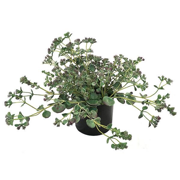 Kunstig ørkenbegonia plante H40cm