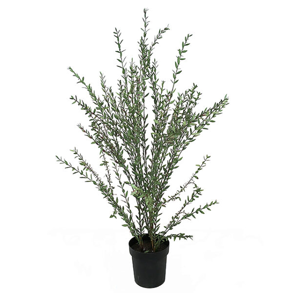 Kunstig eucalyptus busk parvifolia grønn/rød H135cm