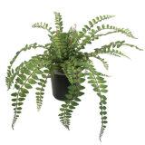 Kunstig skallbregne plante grønn H30cm ipp