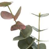 Kunstig eucalyptus gren togrenet støvgrønn L120cm