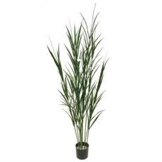 Kunstig gress plante yucca UV H180cm
