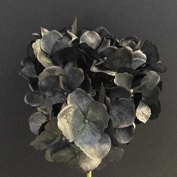 Hortensia dusty dark blåsort 48cm