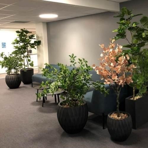 Kunstige planter innendørs