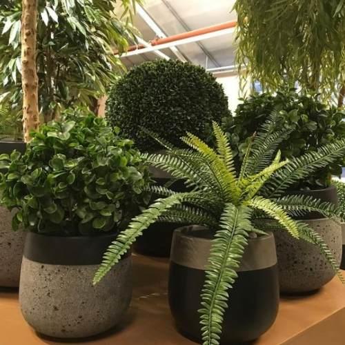 Hva er kunstige planter?